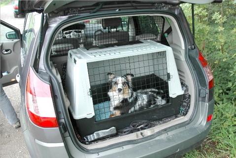 Am schönsten ist es, wenn wir in Urlaub fahren. Urlaub geht ganz einfach: Meine Menschen packen das Auto ganz voll mit Sachen und ich lege mich in meine Autokiste.