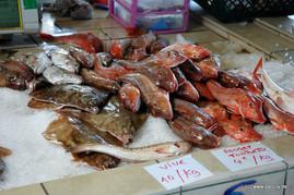 Frischfisch in Grandcamp Maisy (Normandie)
