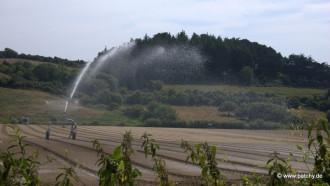 Bewässerung bei Surtainville